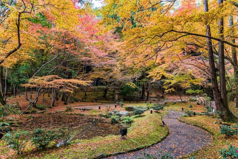 Jardín y bosque del otoño en el templo de Daigoji Kyoto, Japón fotografía de archivo