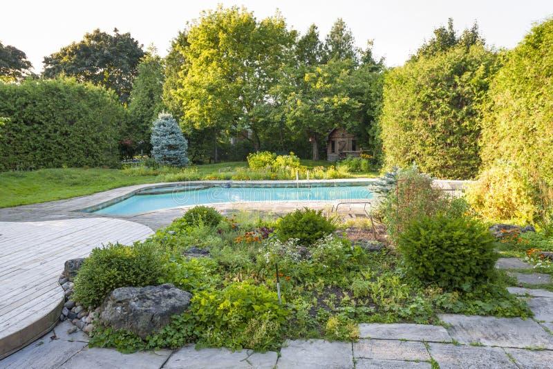 Jardín y piscina en patio trasero imágenes de archivo libres de regalías