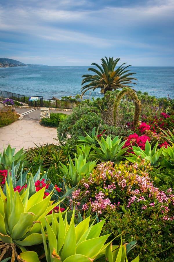 Jardín y vista del Océano Pacífico, en el parque de Heisler, en Laguna imagen de archivo