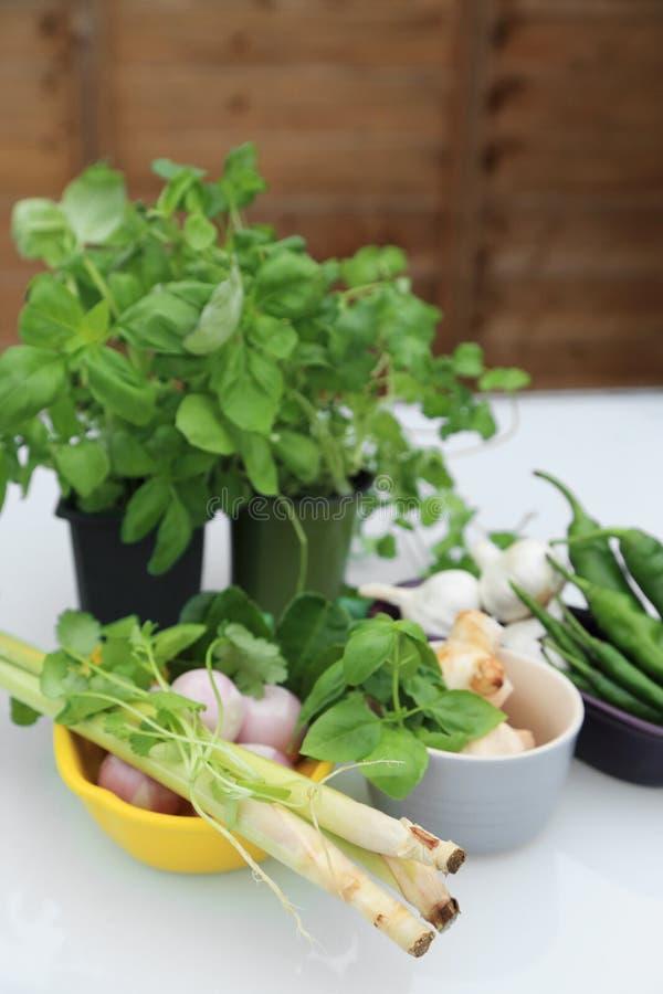Jard?n verde fresco para cocinar - albahaca, perejil, chile, hierba de lim?n, galangal, ajo, chalote, hojas de la cal del cafre e foto de archivo