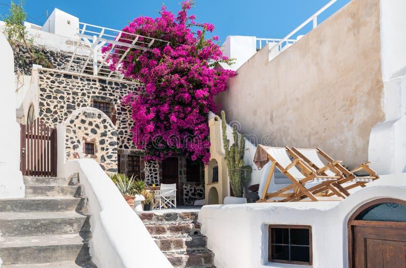 Jarda grega tradicional, decorada com as flores da buganvília na ilha de Santorini, Grécia imagens de stock royalty free