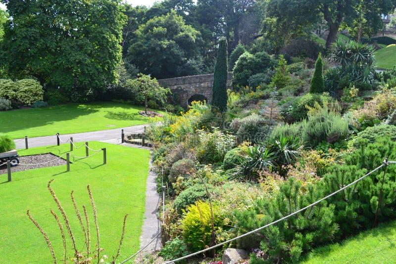Jardim agradável imagem de stock royalty free
