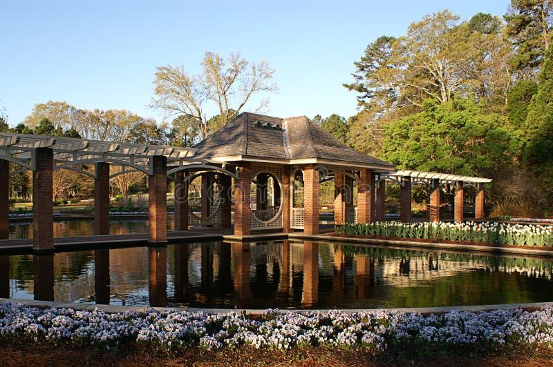 Jardim aquático fotografia de stock