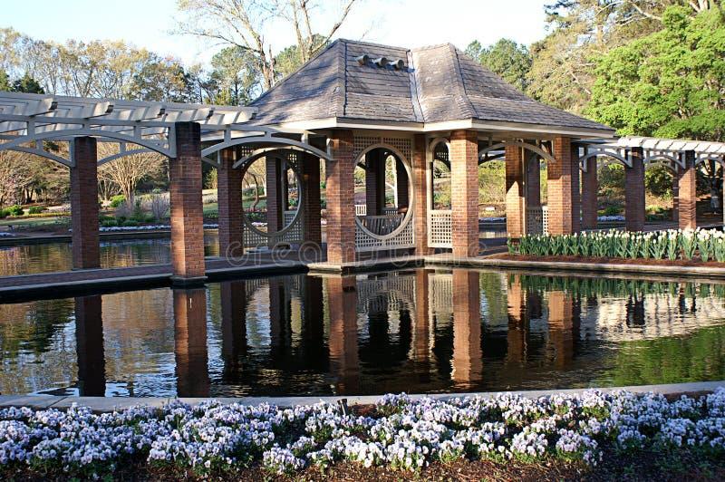Jardim aquático imagens de stock