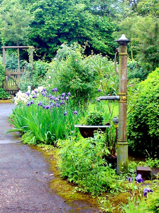 Jardim bonito com muitas verde e flores e uma bomba manual fotografia de stock royalty free