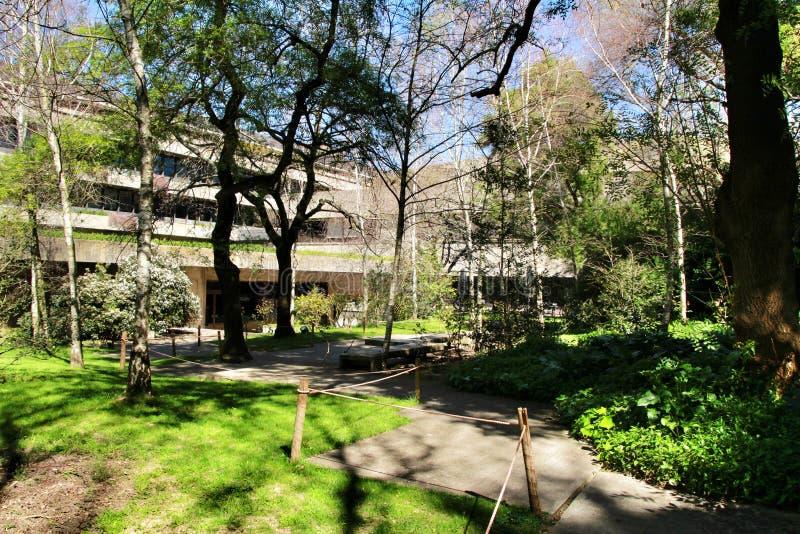 Jardim bonito do museu de Gulbenkian em Lisboa imagem de stock