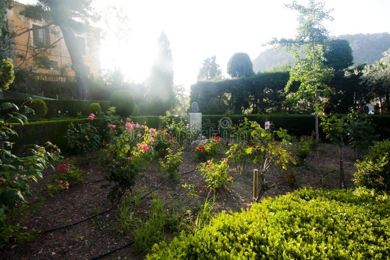 Jardim bonito em Valldemossa, vila mediterrânea velha famosa da Espanha de Majorca foto de stock royalty free