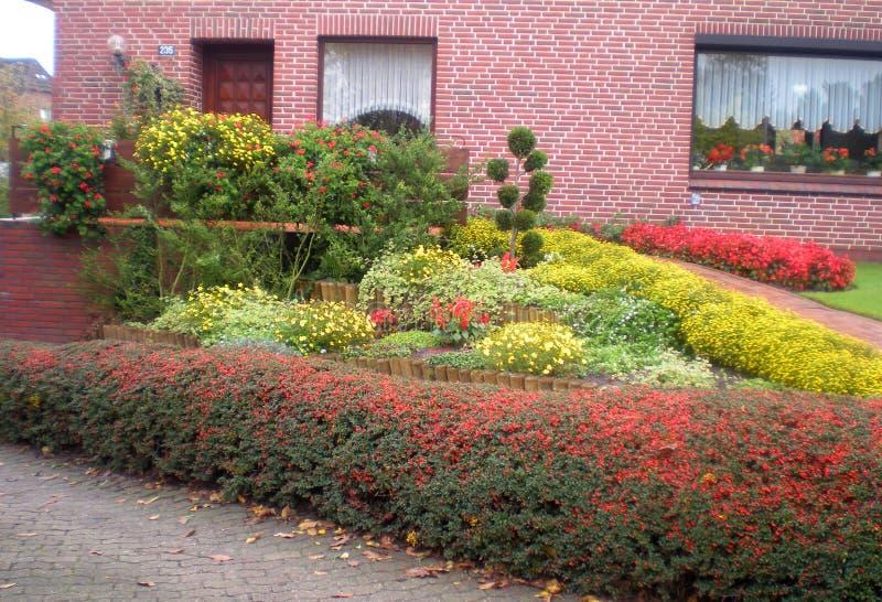 Jardim bonito na casa do tijolo vermelho, lotes ajardinados do jardim Flores amarelas, vermelhas, cor-de-rosa brilhantes em uma c fotografia de stock