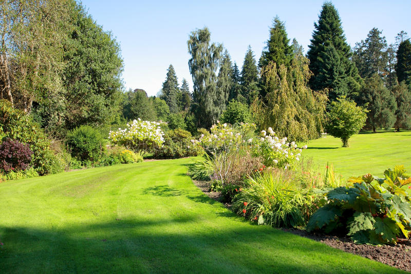 Jardim bonito no parque fotografia de stock