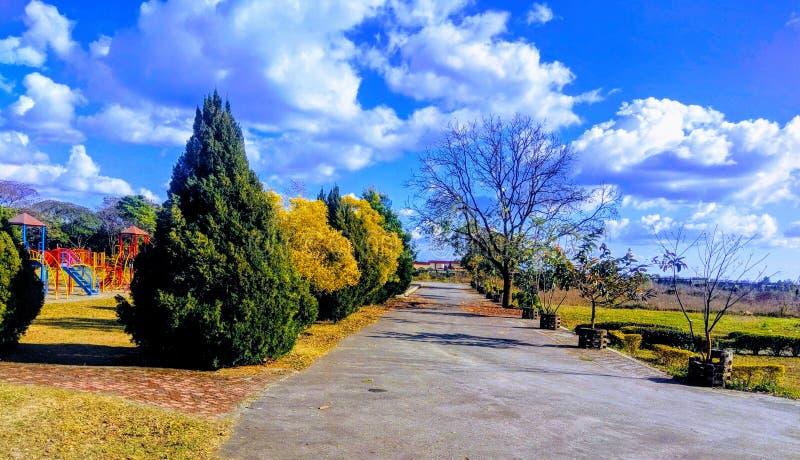 Jardim bonito no uttrakhand de india foto de stock