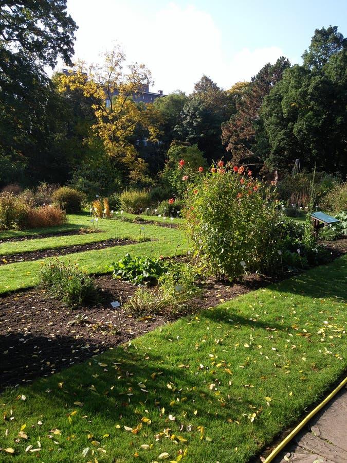 jardim botânico Brunsvique fotografia de stock royalty free