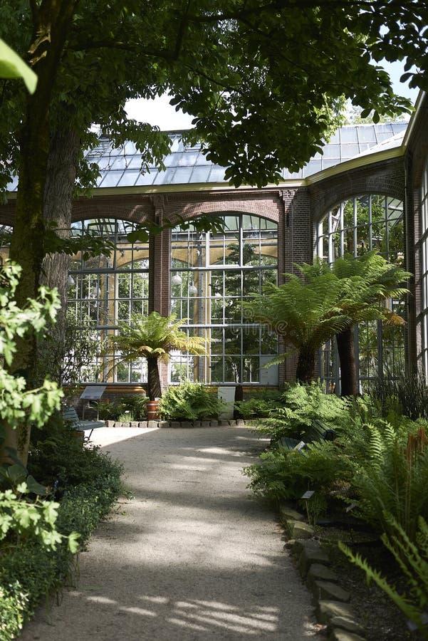 Jardim botânico de Amsterdão fotografia de stock