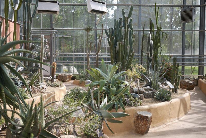Jardim botânico de Amsterdão foto de stock royalty free
