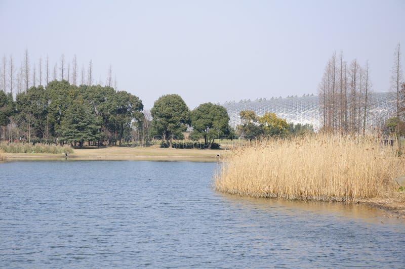 Jardim botânico de Chenshan imagem de stock royalty free