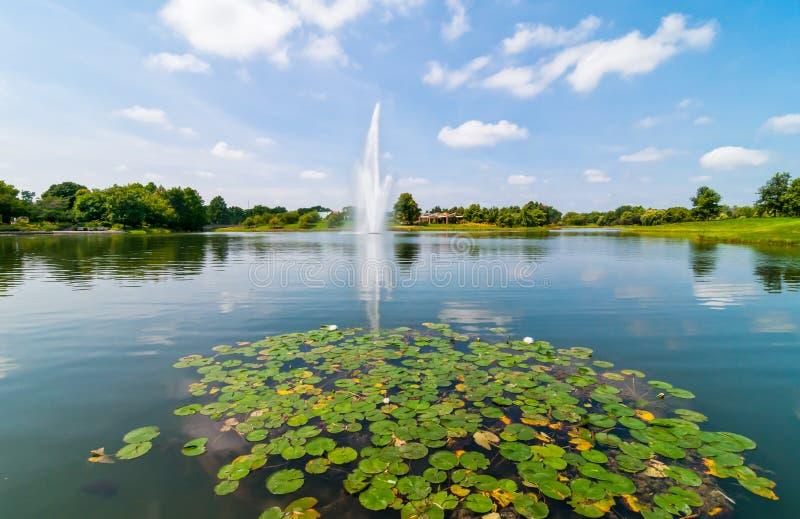 Jardim botânico de Chicago imagens de stock royalty free