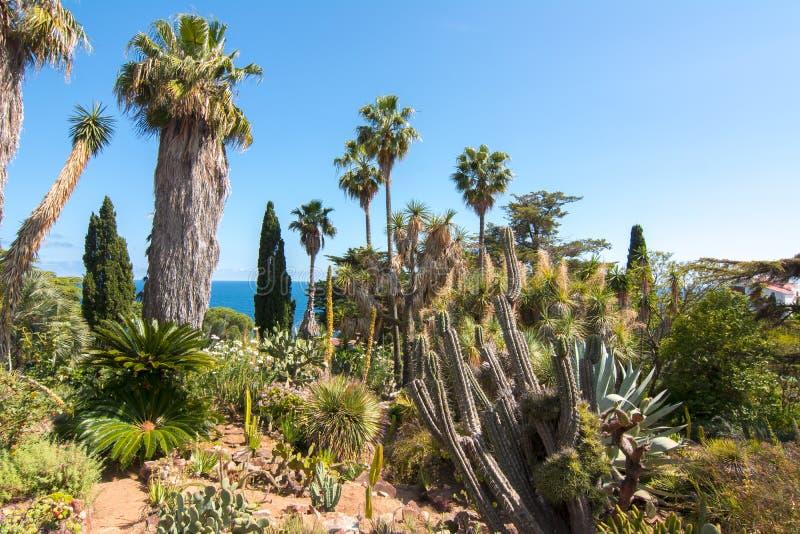Jardim botânico de Marimurtra em Blanes perto de Barcelona, Espanha imagem de stock royalty free