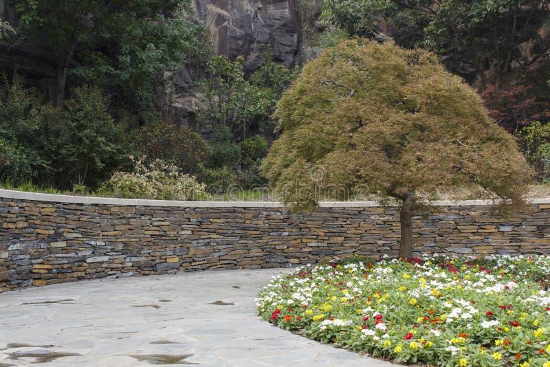 Jardim botânico de Shanghai Chenshan imagem de stock royalty free
