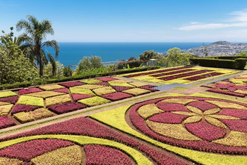 Jardim botânico Funchal na ilha de Madeira, Portugal imagem de stock