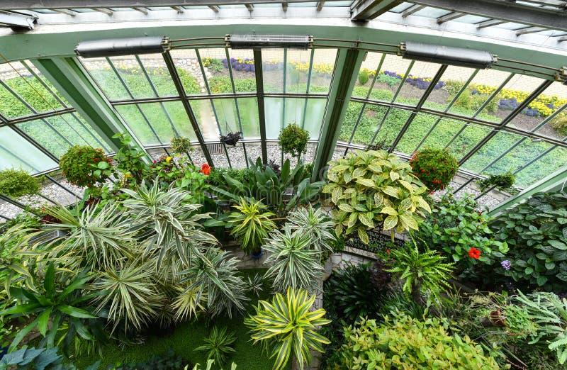 Jardim botânico, Kretinga, Lituânia fotografia de stock