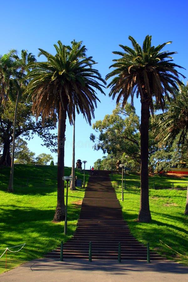 Jardim botânico real, Sydney foto de stock royalty free