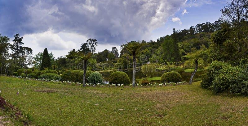 Jardim botânico - Vumba, Zimbabwe fotografia de stock