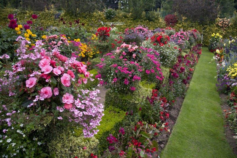 Jardim brilhante & colorido imagem de stock royalty free