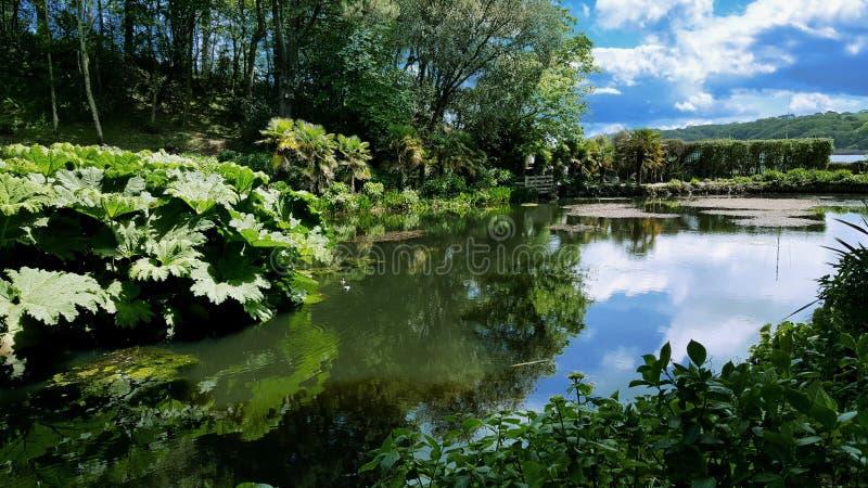 Jardim britânico em Cornualha imagem de stock