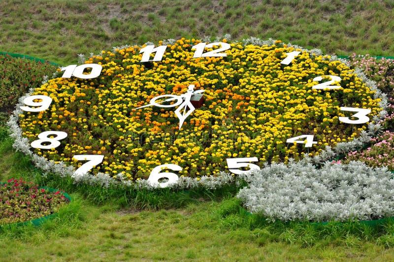 a Jardim-cama gosta de uma Tiquetaque-aderência grande do pulso de disparo do verão fotos de stock royalty free