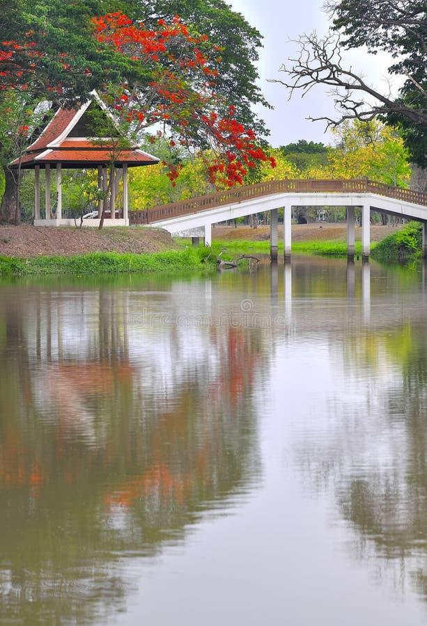 Jardim chinês bonito imagem de stock royalty free