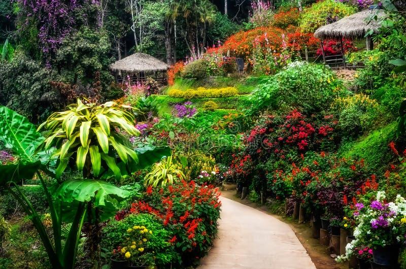 Jardim colorido e calmo ajardinado na flor fotografia de stock royalty free