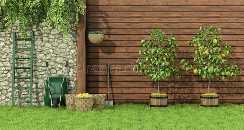 Jardim com árvore de limão ilustração do vetor