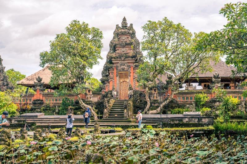 Jardim com as flores de l?tus sagrados de floresc?ncia na frente de Lotus Saraswati Temple em Ubud, Bali imagens de stock