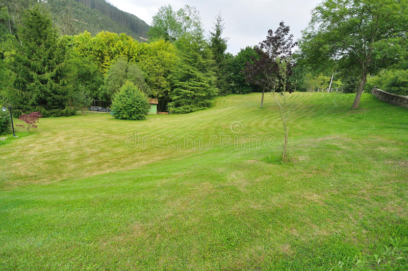 Jardim com gramado e árvores foto de stock