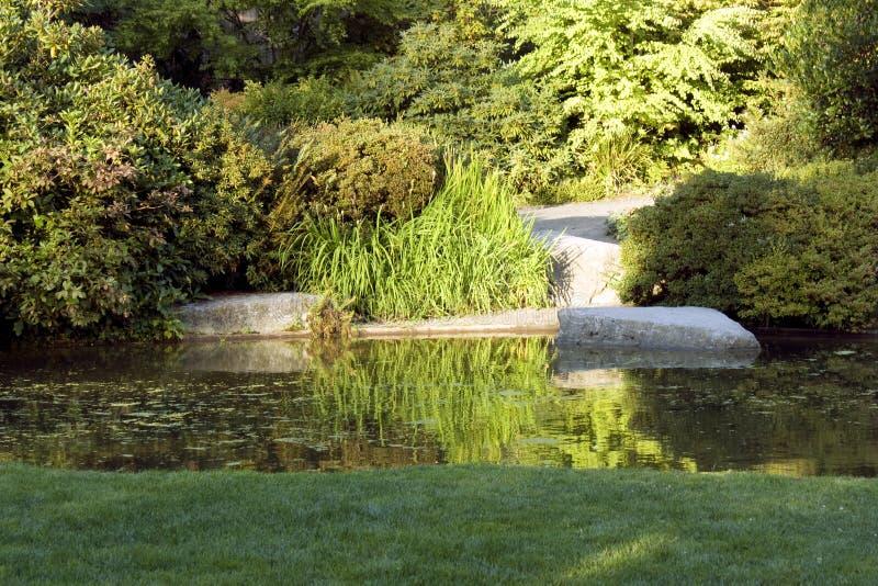 Jardim com gramado e a lagoa agradáveis imagem de stock royalty free