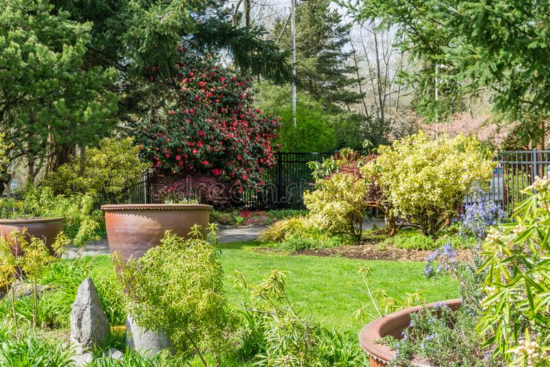Jardim com grandes plantadores foto de stock