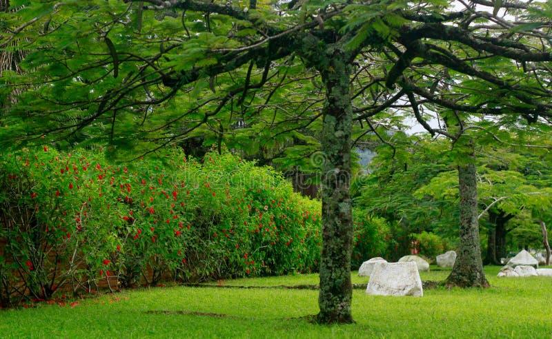 Jardim com rochas brancas imagem de stock