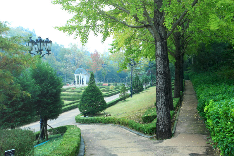 Jardim, console vulcânico de Jeju fotos de stock royalty free