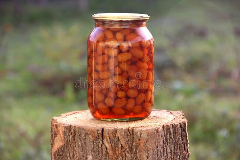 jardim da amoreira do doce do melaço do arando natural imagem de stock royalty free