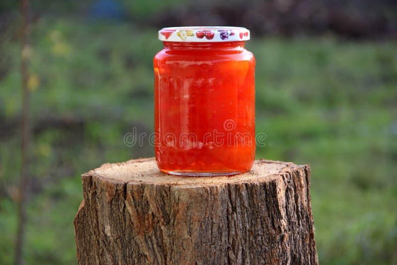 Jardim da amoreira do doce do melaço natural imagem de stock