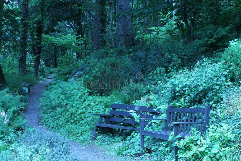 Jardim da floresta em TÅ· Hyll, a casa feia, Gales norte fotos de stock royalty free
