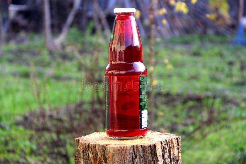 Jardim da garrafa da flor da água de Rosa imagens de stock royalty free