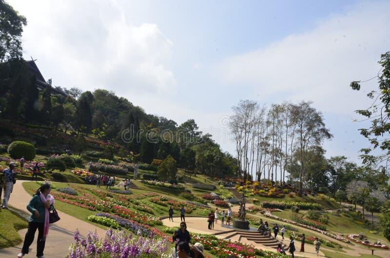 Jardim da majestade fotos de stock