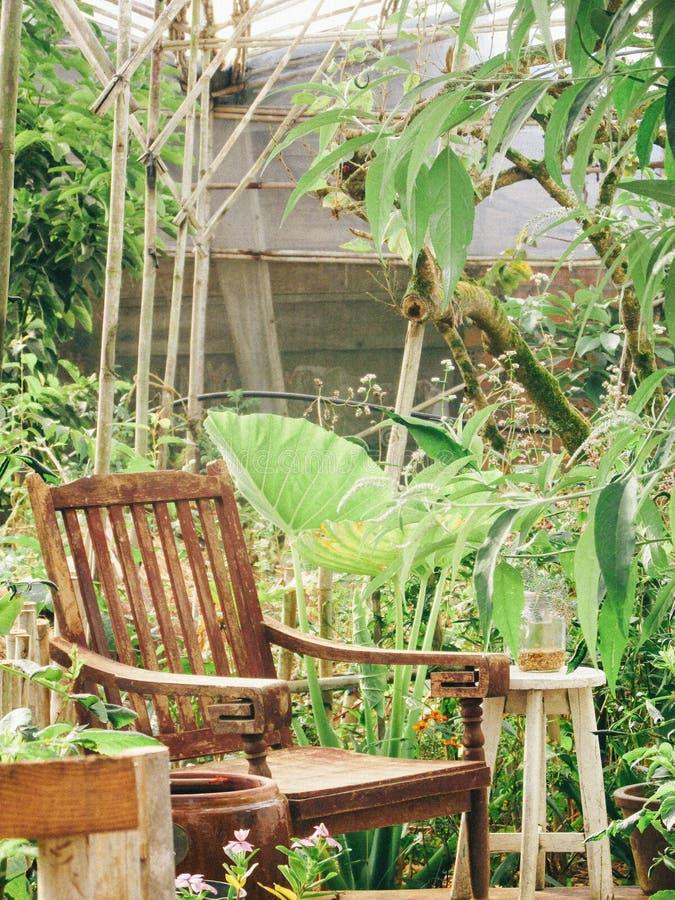 Jardim da mola - Dalat imagem de stock royalty free