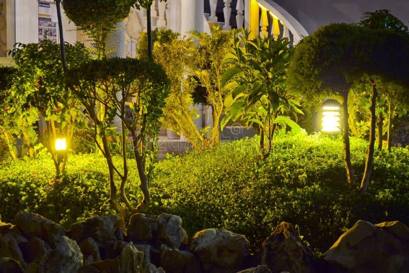 Jardim da noite. fotografia de stock royalty free