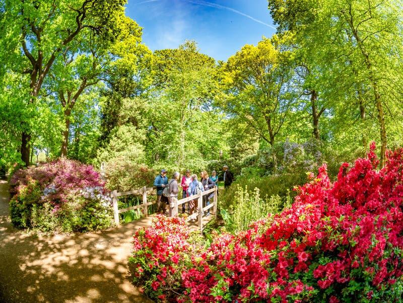 Jardim da plantação de Isabella no parque de Richmond, Londres fotos de stock
