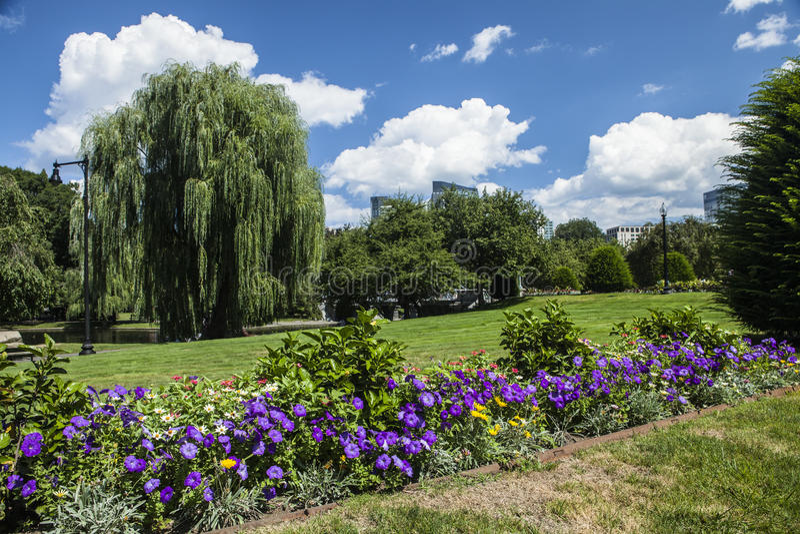 Jardim de Boston imagem de stock