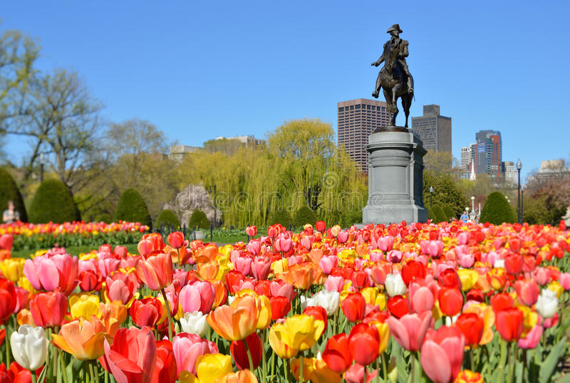 Jardim de Boston Public fotos de stock