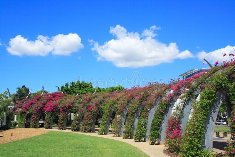 Jardim de Brisbane imagens de stock