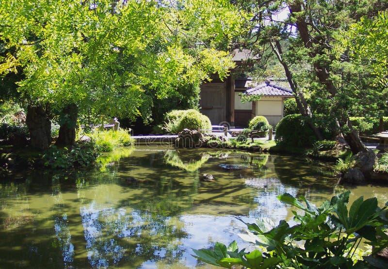 Jardim de chá japonês imagens de stock