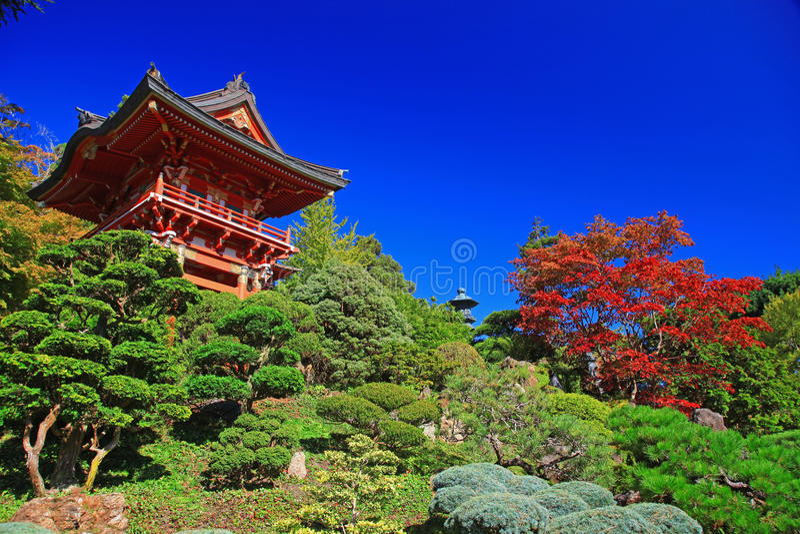 Jardim de chá japonês em San Francisco fotos de stock royalty free
